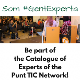 Be part of the Catalogue of experts of the Punt TIC Network!