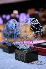 """Guardó del Premi d'Honor de la 25a edició de la """"Nit de les Telecomunicacions i la Informàtica"""""""