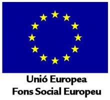 Subvencions per a programes innovadors cofinançats pel Fons Social Europeu
