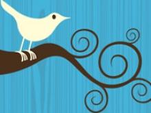 Twitter, exemple del potencial de les eines socials d'Internet