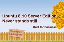 Ubuntu 8.10 Intrepid Ibex, en català