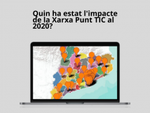 The impact of the Punt TIC network in 2020