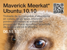 Maverick Meerkat Ubuntu 10.10