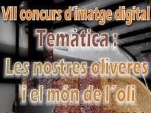 Part del cartell del concurs d'imatge digital de Santa Bàrbara 2012