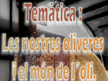 VII Concurs imatge digital. Les nostres oliveres i el món de l'oli.