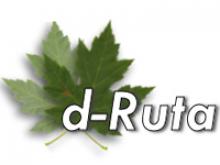 D-Ruta