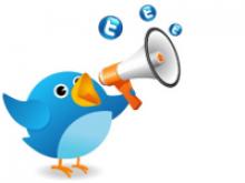 Imatge de la guia, un ocell amb la icona de Twitter