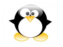 Pingüí, imatge de Linux