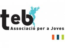 Logotip Associació per a Joves Teb