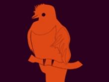 Part del logo de l'Ubuntu 12.10 Quantal Quetzal