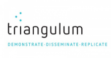 Projecte 'Triangulum'