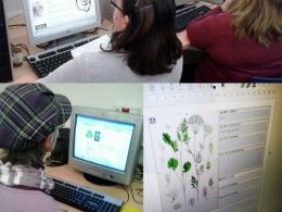 El Punt Òmnia Casal Cívic Badia del Vallès publica un llibre de plantes medicinals