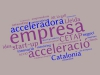 Núvol de paraules de la presentació d'Start-Up Catalonia al CETAP