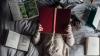 Llibres TIC per aquest Sant Jordi